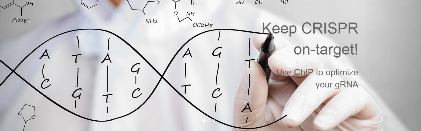 ChIP to optimize gRNA CRISPR