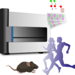 Infinium Methylation EPIC Array 受託解析サービス