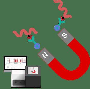 MeDIP-seq/hMeDIP-seq受託解析サービス